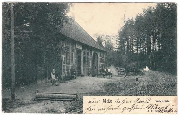 AK - MELLE - WALDMEISTER - gelaufen 1904 #ak0163