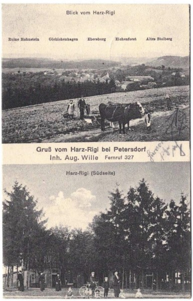 AK - Harz-Rigi bei Petersdorf - Aug. Wille - gelaufen 1918 #ak0150