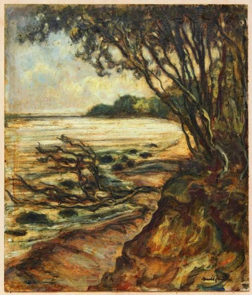 Ölgemälde UFERLANDSCHAFT von Harald Illies (1911-1985)