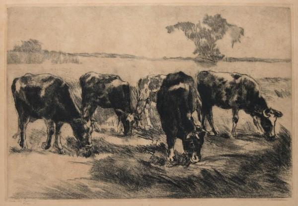 Aenny Loewenstein (1871-1925) Große Radierung KÜHE - 3/100 bleistiftsigniert - Anfang 20. Jh.
